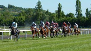 競馬関連の記事